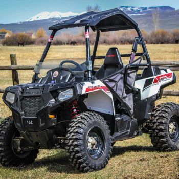 Polaris ACE White Lightning